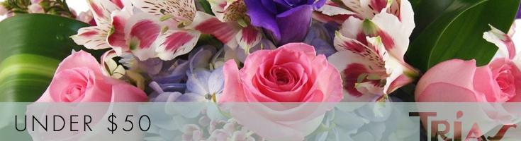 Flowers Under $50